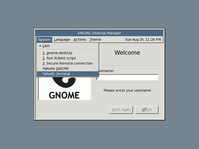 Starting Gnome failsafe terminal