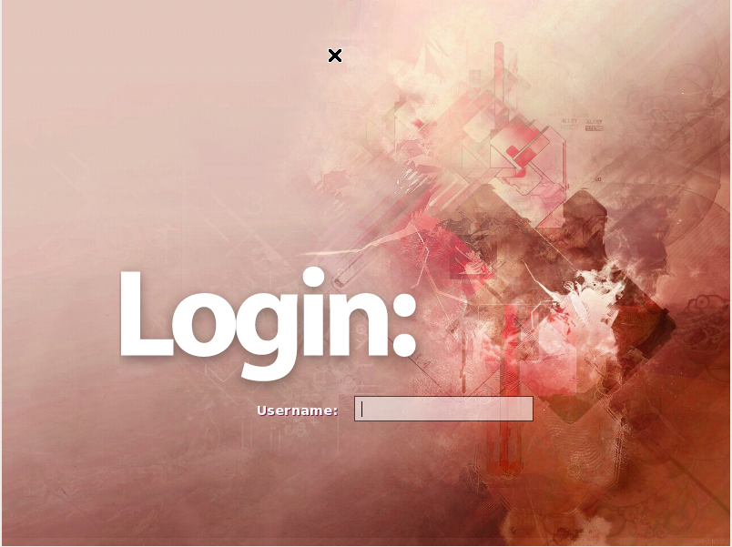 SLiM login screen
